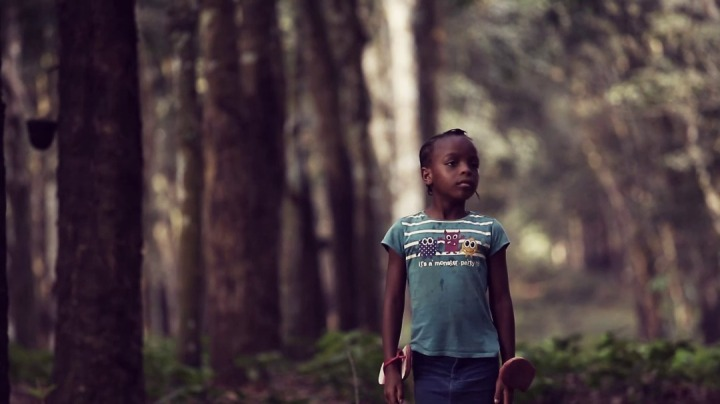 Cameroon Gets 17 Nominations at The 2018 Zafaa Awards